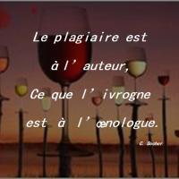 """Citation : """"Le plagiaire est..."""""""