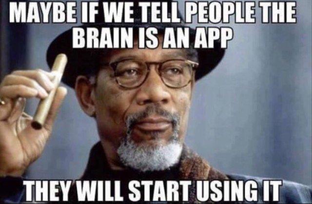 Notre  Cerveau une application ?