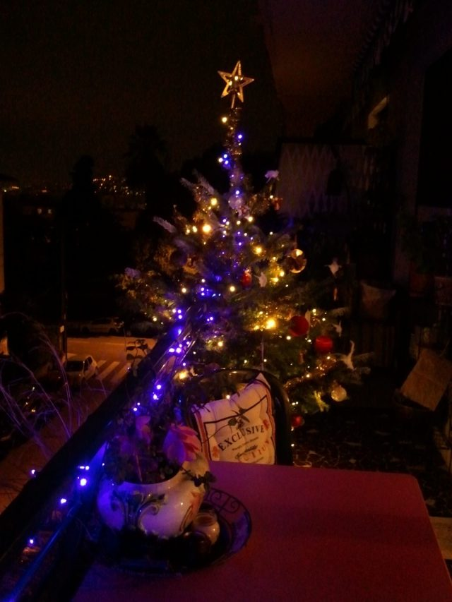 Mon arbre 2016 - Nuit