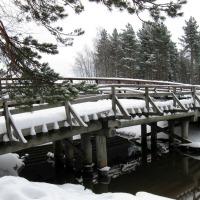 Haïku pour hiver givré...